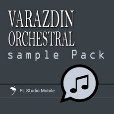 Image of the Varazdin Orchestral - InApp content.