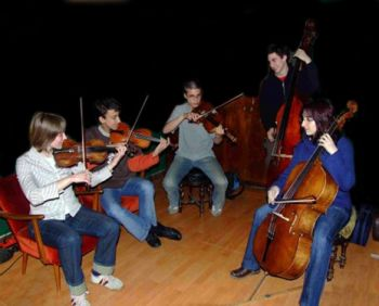 Image of the Chamber Strings 5 person ensemble - content included in Varazdin Orchestral.