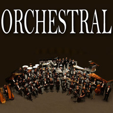 Image of the Orchestral CD - only download available online - no cd included.
