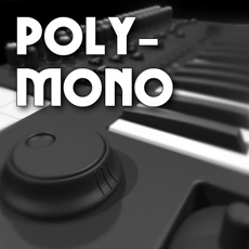 Image of the Poly-Mono CD - only download available online - no cd included.